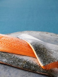Close up of salmon filets