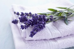 Lavender Flowers and Towels